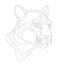Adult Captive Mountain Lion vector illustration
