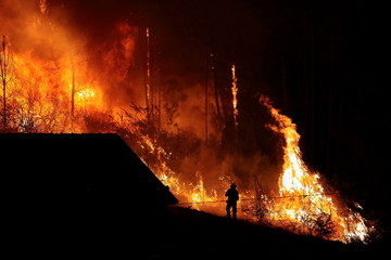 Forest burns close to houses, fireman silhouette