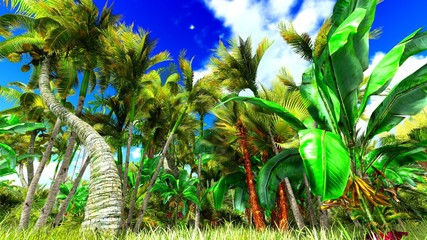 Tropical jungle 3d illustration