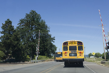 School Buses at Railroad Crossing