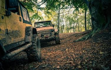 Muddy 4x4 Offroad Trail