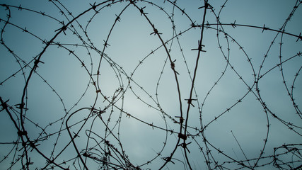 Bardbed wire