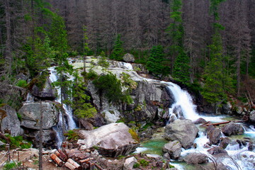 Cold stream waterfall in national park High Tatra, Slovakia, Europe