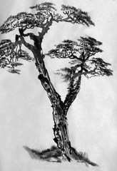 Pine painted in ink