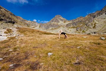 Yoga  Chakra-asana in Tatry mountains