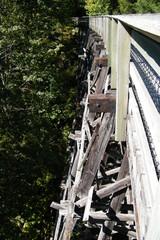 Old Wooden Train Trestle Bridge in Forest