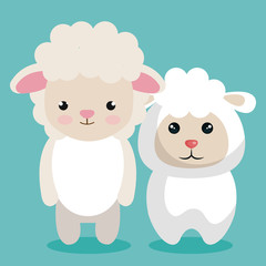 cute couple stuffed animals vector illustration design