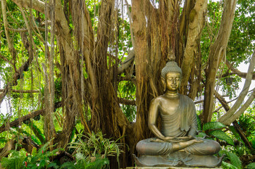 Bronze Buddha Statue Sitting under Banyan Tree. Feeling Calm Peace and Enligthen Wat Rong Khun