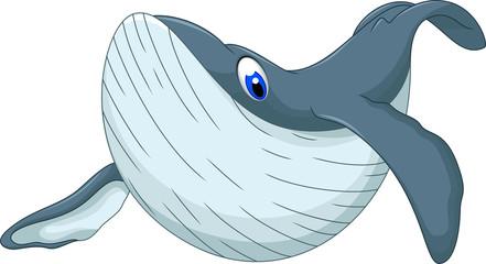 cute whale cartoon for you design