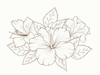 Lily and hibiscus flowers garland bouquet. Isolated detailed vector design sketch drawing. Bunch of spring summer flowers. Botanical floral illustration. Sepia brown outline on beige background.