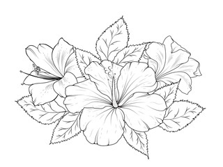 Hibiscus and lily flowers bouquet garland composition. Isolated black and white detailed vector design sketch drawing. Bunch of spring summer flowers. Botanical illustration.