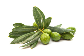 Green olives with leaves