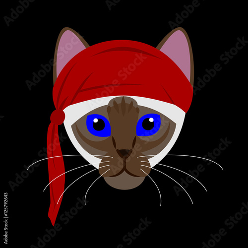 Cat with red scarf