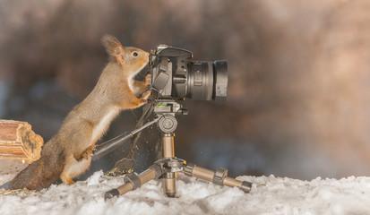 winter shots