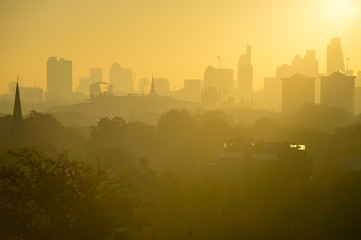 Golden sunrise skyline view of London, England featuring modern skyscrapers peeking up above misty parkland trees