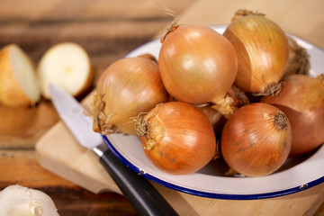 Onions on plate