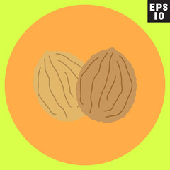 Walnut icon in trendy flat style isolated on color background. Autumn symbol for your design, logo, UI. Vector illustration, EPS10.