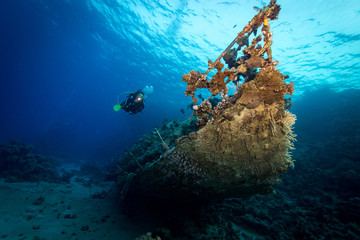Diver explores wreck of yacht in the Red Sea, Egypt