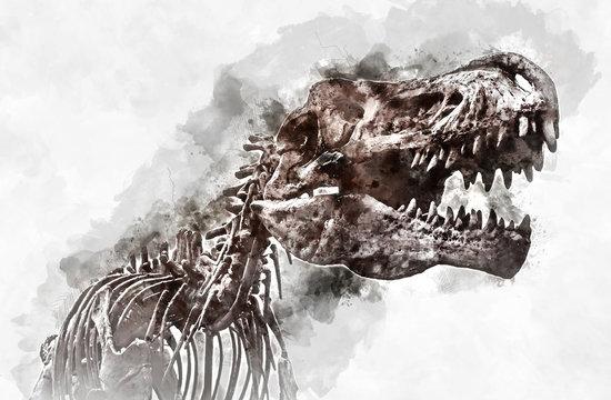 Tyrannosaurus rex skeleton. Digital watercolour