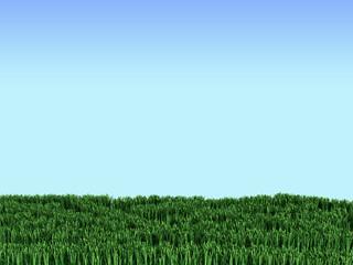 Grass 3d illustration on blue