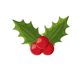 Leaves with berry icon. Christmas season decoration and celebration theme. Isolated design. Vector illustration