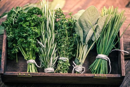 close view on fresh herbs