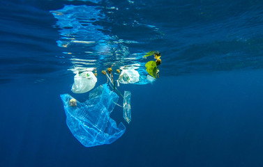 Marine pollution of plastic