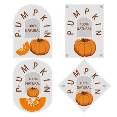 Abstract vector illustration of logo on the label for pumpkin