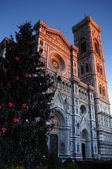 Christmas in Florence, Christmas tree in Piazza del Duomo in Florence with the Cathedral in the background