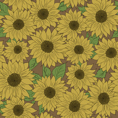 Hand drawn pattern sunflowers background. Flower yellow brown. Packaging products