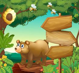 Fotobehang Beren Scene with bear and wooden signs