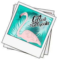 Polaroid photo with flamingo and watercolor palms. Lettering col