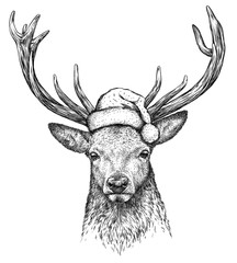 Foto auf Acrylglas Weihnachten deer, black and white engrave. Christmas hat.