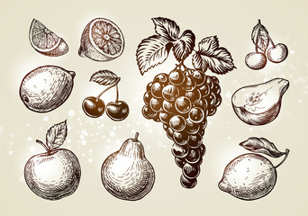Set fruits sketch. Hand-drawn elements such as grape, lemon, cherry, pear, apple. Vector illustration