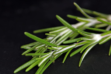 Rosemary on black background. Fresh, raw, organic vegetables. Co