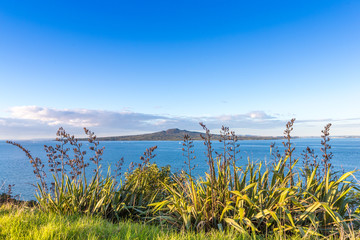 Evening sea view with a volcanic island on a horizon. Rangitoto island in Hauraki Gulf, Auckland, New Zealand