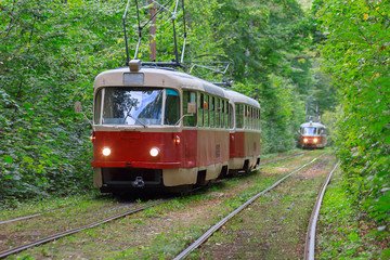 Trams with the lights on in the forest tunnel. Kiev, Ukraine