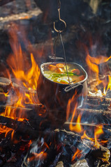 vegetables prepared in a pot over fire on the nature