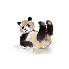 Giant Panda lying on his back, watercolor