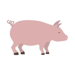 pink pig icon over white background. farm animal design. vector illustration