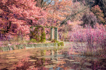 Autumn scene on lake - Infrared filter