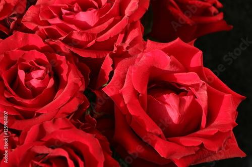 red roses rote baccara rosen stockfotos und lizenzfreie bilder auf bild 125904007. Black Bedroom Furniture Sets. Home Design Ideas