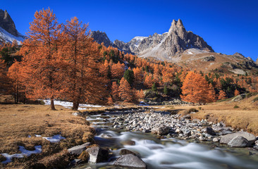 Fotomurales - The river Claree and Larch trees in Vallee de la Claree during a clear day in autumn.