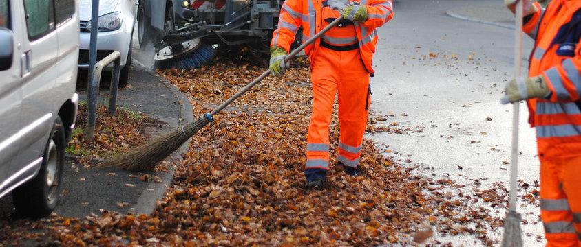 Straßenreinigung fegt im Herbst Laubblätter