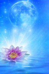 Wall Mural - moon and flower lotus over starry magic background with stars