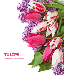 Lilac flowers and tulips bunch in vase isolated on white background