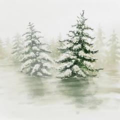 Forêt de sapin sous la neige