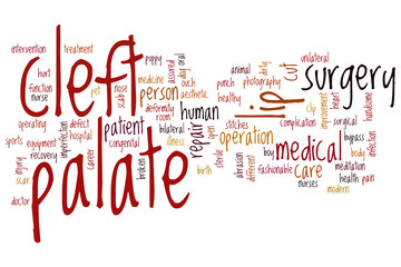 Cleft palate word cloud