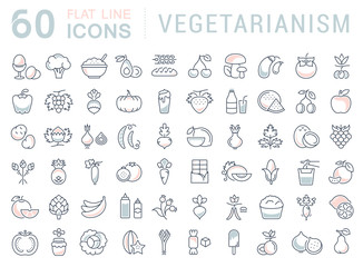 Set Vector Flat Line Icons Vegetarianism