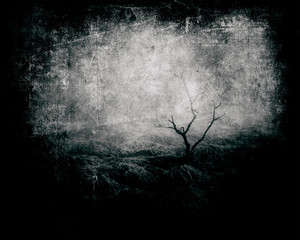 Mystical Landscape, Grunge Scary Background With Tree